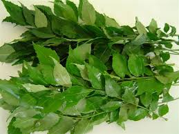 #7 - Curry Leaves